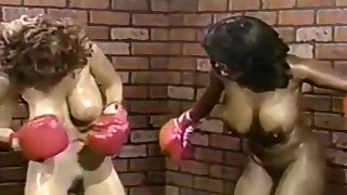 Interracial Boxing Beat Down 1
